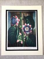 Vintage Botanico Stampa Passion Fiore Fiori Floreale The Temple Di Flora Grande
