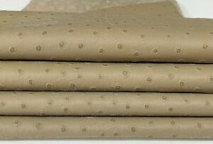 OSTRICH BEIGE textured embossed soft Lambskin leather 2 skins 12sqf 0.7mm #A7406