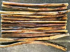 "200 - 12"" Beef Bully FRESH STICKS *USA* Dog Treat True Chews SOLID FRESH New"