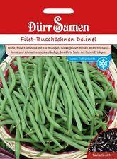 Dürr Filet -   Buschbohnen Delinel  Hoher Ertrag Bohne Samen 150 Korn