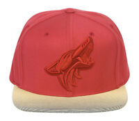 Mitchell & Ness Arizona Coyotes City Undervisor