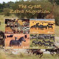 Liberia 2018 MNH Great Zebra Migration 4v M/S Zebras Wild Animals Stamps