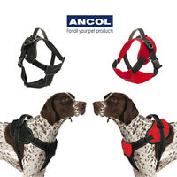Ancol Extreme Padded Adjustable Harness Durable Reflective & Tractive Compatible