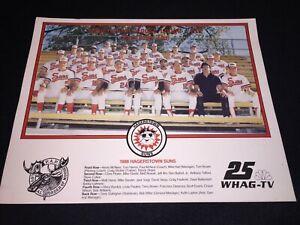 1988 Hagerstown Suns Minor League Baseball - TEAM PHOTO - HAGERSTOWN MD