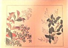 Japanese Botanical drawing 14.5 x 11 inch