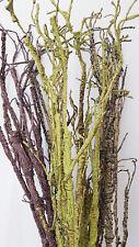120cm Kunstpflanzen FORMBARE Kunstzweige Weiß Braun Schwarz Grün B-Ware