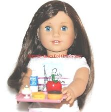 School /Lunch Tray 5 Piece 18 in Doll Food For American Girl Z