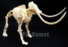 Woolly Mammoth Dino Dinosaur Skeleton Display Figure 4D 3D Puzzle Model Kit Toy