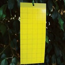 5 x LARGE AREA YELLOW STICKY GLUE FLYING INSECT TRAP