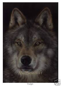 Twilight, Limited Edition Wolf Print by Vic Bearcroft