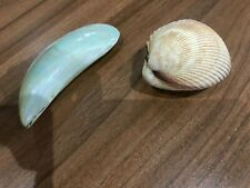 2 x decorative shells