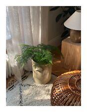 More details for large antique / vintage ceramic plant pot / fern / labour and wait