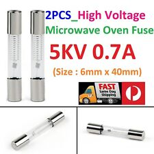 2PCS Microwave Oven High Voltage Glass Fuse  5KV 0.7A (700mA)  6mm x 40mm