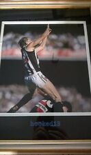 Josh Fraser Collingwood Magpies Signed/Autographed picture framed