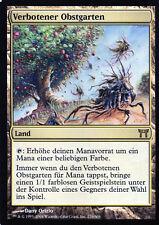 Forbidden Orchard / Verbotener Obstgarten - Champions of Kamigawa - Magic NM DE