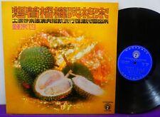 SUN GOD BAND LP Plays Popular Folk Music in Fujian  CHINESE 70s Durian NM!