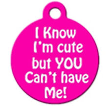 I know I'm cute but You can't have Me! - Pet Id Dog or Cat Tag or Collar Charm