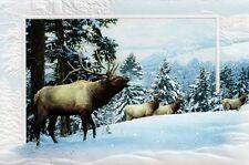16 Boxed Embossed Christmas Cards Elk Wapiti In Snow