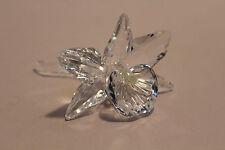 Swarovski Crystal Pale Yellow Orchid 7478 NR 002 200287 With Cushion NIB