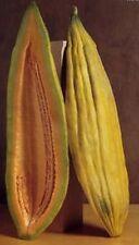 Banana Cantaloupe Long Melon Heirloom Non-GMO Garden Fruit Vegetable Seeds