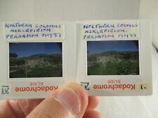 Vintage Amateur Kodachrome Photo's Slides Turkey Scenes 1980's - Social History
