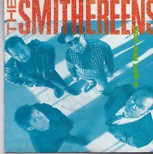 The Smithereens-A Girl Like You vinyl single
