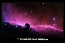 THE HORSEHEAD NEBULA POSTER 24X36 cosmos outer space BEAUTIFUL LIGHT RARE