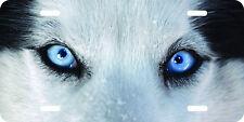 Airbrushed Siberian Husky wolf  original art license plate