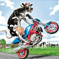 Full drill Diamond Painting Cartoon Cow Farm Motorcycle Fashion Handicraft 6384X
