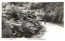 AUSTRALIA Victoria Sherbrooke Clematis Ave Rose Series P. 2725