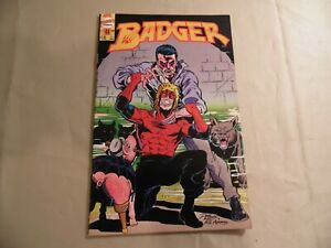 Badger #44 (First 1989) Free Domestic Shipping