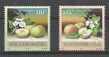 Hongrie  2011 fruits pommes neuf ** 1er choix