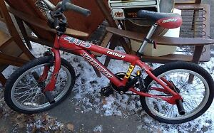 Specialized Fat Boy 415 Collector