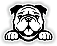 Bulldog Sticker for Bumper Truck Laptop Luggage Suitcase Tablet #02