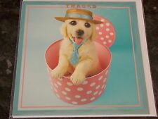Mad Hatters Dog Themed Card by Tracks Cards. Blank Cards Pack of 6. 3 available.