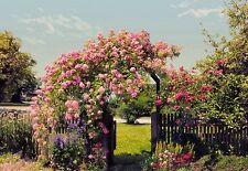 GIARDINO DELLE ROSE CARTA DA PARATI FOTO MURALE PARETE FIORI ROSE alberi 368x254cm