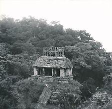 MEXIQUE c. 1960 - Cité Maya  Le Temple du Soleil  Palenque - Div 11472