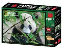 National Geographic Giant Panda 500 Piece Super 3D Lenticular Jigsaw Puzzle NEW