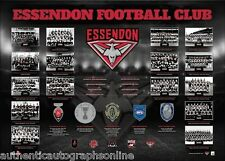 ESSENDON FC -the Historical Series Print
