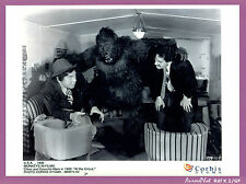 """PHOTO DE PRESSE CINÉMA : THE MARX BROTHERS, FILM """" AT THE CIRCUS """", MONKEY-K2"""