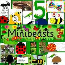 MINI BEASTS Early years teaching resources on CD- EYFS, minibeasts, childminder