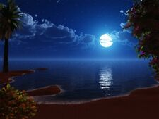 NATURAL SOUNDS THE OCEAN AT NIGHT CD SOUNDS OF THE SEA, RELAX WITH NATURE