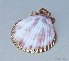 Large Seashell - Gold Edge - Natural Sea Shell Pendants - Scallop Shell Bead