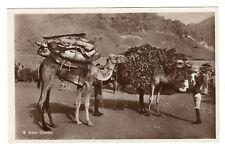 More details for aden camels - real photo postcard c1920s