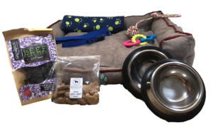 Zuce Puppy Dog Bronze Basics Starter Pack With 26 Inch Plush Indoor Bed Small