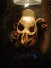 GNARLY RAT SKULL BOTTLE halloween jar display REAL BONE grape vines dried SAND
