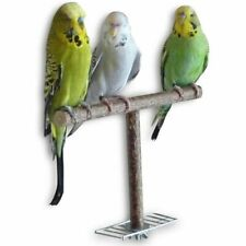 Natural Grinding Parrot Stand Wood Parakeet Chewing Toy Bird Toy T Shape Branch