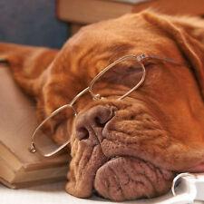 "Birthday Card Dogue de Bordeaux ""Dog Tired"" Ideal for Granddad Husband Dad Son"