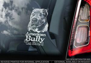 AMERICAN BULLY Car Sticker, Bull Terrier Dog Window Sign Decal Gift Pet - V06