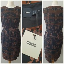 Asos Black Tapered Waist Dress Size 14 (New With Tags) Black Brown